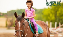Blossom Hill Ranch-Half Off Private Horseback Riding Lessons!