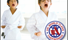 U.S. World Class Taekwondo Tri-Cities-5 Taekwondo Lessons Punch Card PLUS a FREE Uniform, an $89 value for only $20!