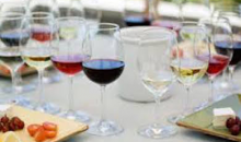 Sapphire Hill Vineyards-50% off Five Course Food and Wine Pairing for Two