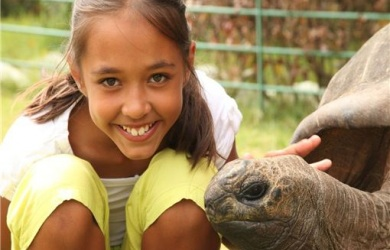 Wild Wonders-$40 for Summer Day Camp at Wild Wonders ($80 Value)