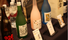 Japan Society of San Diego and Tijuana-14th Annual Beer & Sake Festival