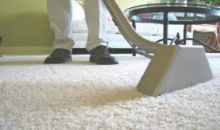 Royalty Carpet Cleaning Service-Professional Carpet Cleaning for Three, Five or Seven Rooms