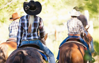 Vin Hesten Trail Rides-$150 for a Premier Trail Ride with Wine Tasting for Two from Vin Hesten Trail Rides! ($300 Value)