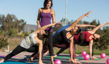 Temecula Yoga in the Vines -$10 for One Yoga in the Vines Class! ($20 Value)