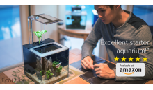ADI Ventures Inc.-52% OFF the Eco Cube C, the Lowest Maintenance Desktop Aquarium, a $165 Value for Only $79!