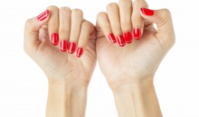 Red Roote Salon & Day Spa-Signature Shellac Manicure at Red Roote Salon & Day Spa, a $40 Value for Only $20!