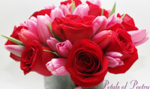 Petals of Poetry Floral Design-Only $20 for Valentine's Day Floral Arrangement ($40 Value)