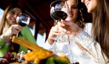 VinDiego Wine & Food Festival San Diego-The 5th Annual VinDiego Wine & Food Festival