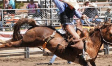 Ramona Rodeo -Your Tickets to the Ramona Rodeo!